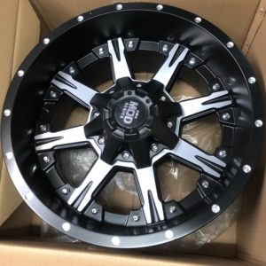 17″ Black Label Polish face bnew mags(6H-PCD114)